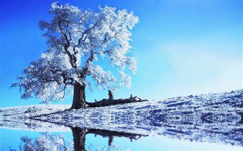 Imágenes de bonitos paisajes de invierno   Fotos Bonitas ...