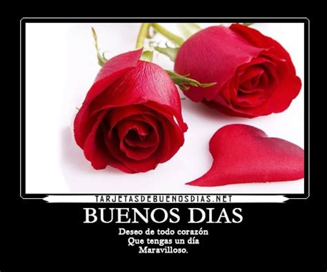 imagenes de buenos días con rosas hermosas