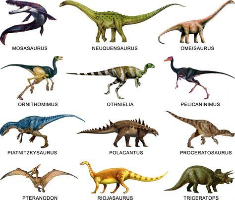 Imagenes de dinosaurios con nombre   Imagui