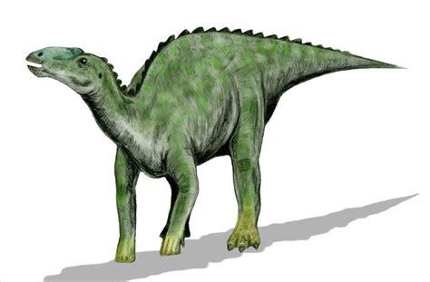 Imagenes De Dinosaurios   Imágenes   Taringa!