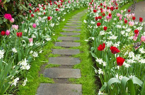 Imagenes De Flores Y Jardines