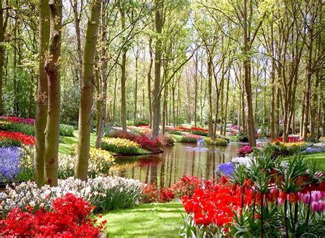 Imagenes De Jardines Con Flores Para Usar Como Fondo De ...