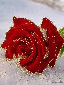 Imagenes De Rosas Y Corazones Brillantes