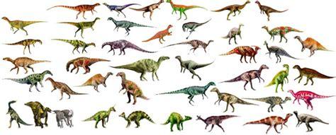Imágenes de tipos de dinosaurios | Imágenes