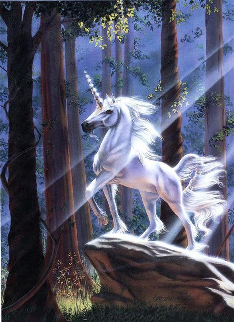 Imágenes de unicornios mágicos para compartir   Mil Recursos