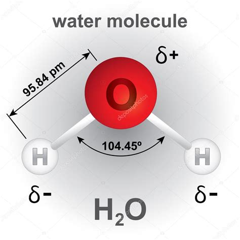 Imágenes: molecula de agua   Ilustración que representa la ...