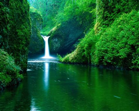 imagenes  paisajes tropicales    Taringa!