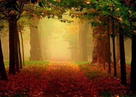 Imagenes romanticas   Imagenes de paisajes naturales hermosos