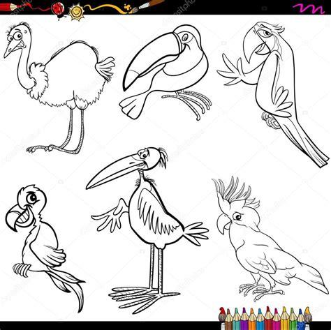 Imagens De Aves Para Colorir