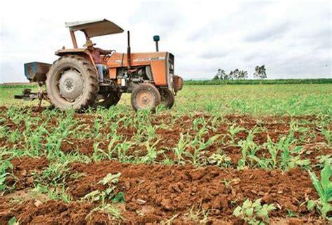 IMPORTANCIA DE LA AGRICULTURA EN MÉXICO