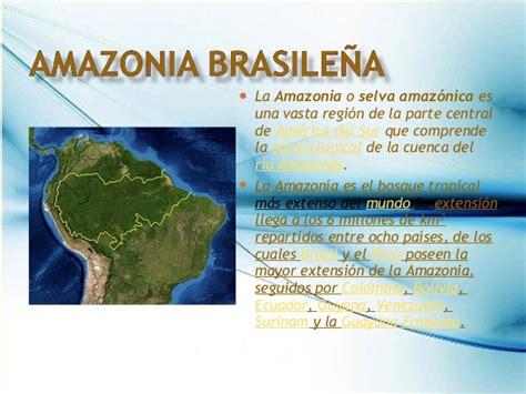 Importancia del amazonas