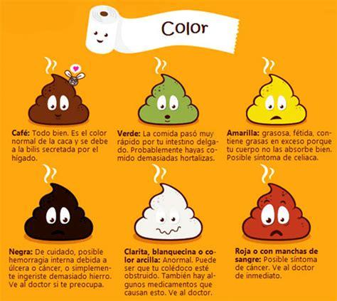 IMPORTANTISIMO: El color de las heces puede revelar mucho ...