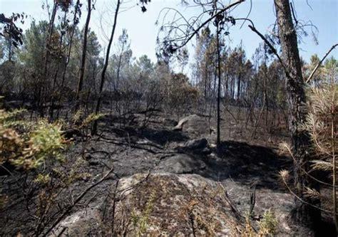 Incendios Galicia: Galicia cerrará 2014 con el dato más ...
