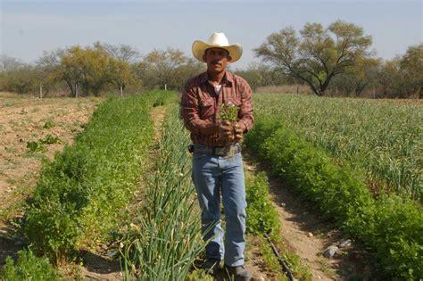 INEGI señala que el mexicano consume 188 kg de granos al año