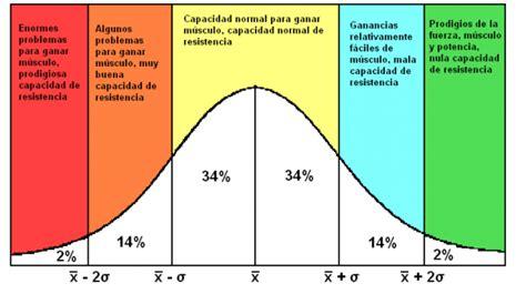 ¿Influye la genética en el desarrollo muscular ...