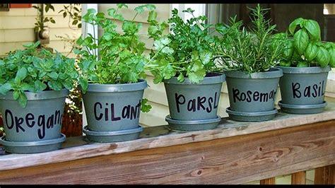 Infochacoonline te aconseja: Cómo plantar hierbas ...