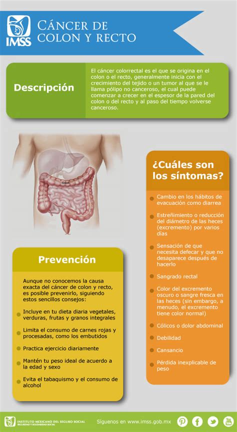 Infografía, Cáncer de colon y recto