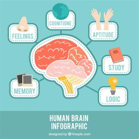 Infografía de cerebro con diferentes temas | Vector Gratis