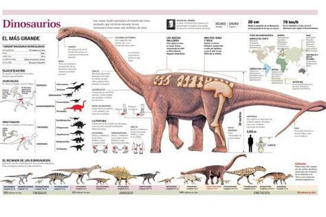 Infografía De La Anatomía Del Argentinosaurus Y ...