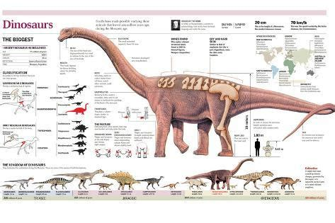 Infographic of the Anatomy of Argentinosaurus and ...