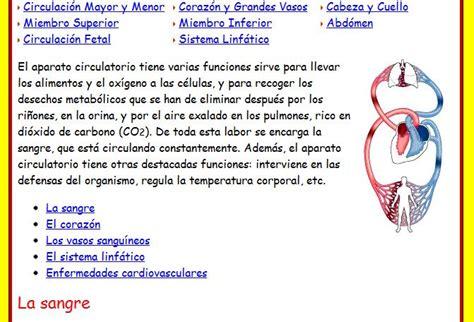 Información sobre el sistema circulatorio   Imagui