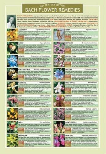 Information Chart, Two Sided Color   Bach Flower Remedies ...