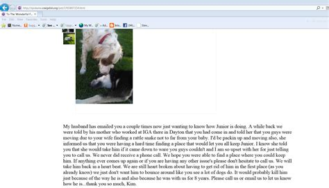 Inland Small Dog Rescue : Reasons NOT to rehome a dog for free