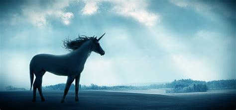 Inner Unicorn   Denver Pain and Performance Solutions