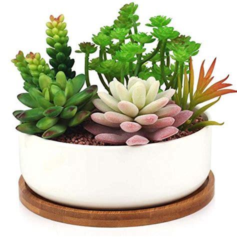 INNOTER Succulent Planter, Modern White Ceramic Cactus ...