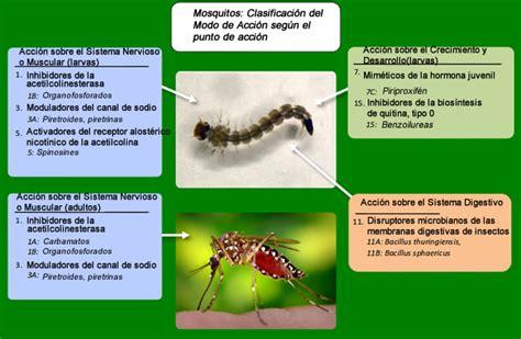 Insecticida 3en1 Larvicida Y Ovicida Derribes P1 Ha $799 ...
