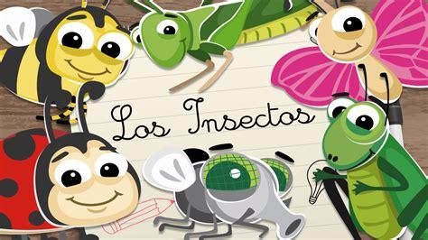 INSECTOS en ESPAÑOL para niños – Vídeos educativos para ...