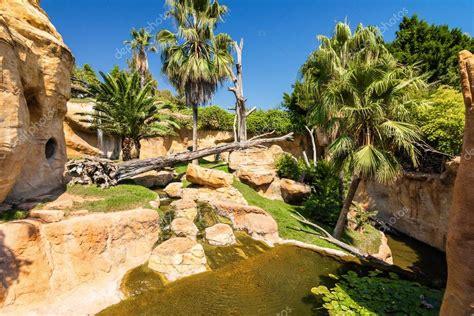 Inside Benalmadena zoo, Malaga province, Spain. — Stock ...