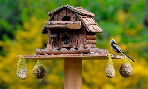 Instalar comederos de pájaros en el jardín beneficia a ...