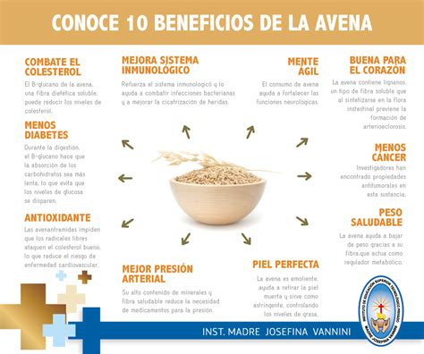 Instituto Vannini: Conoce 10 Beneficios de la Avena ...
