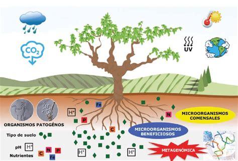 Interacciones de los factores ambientales al cambio ...