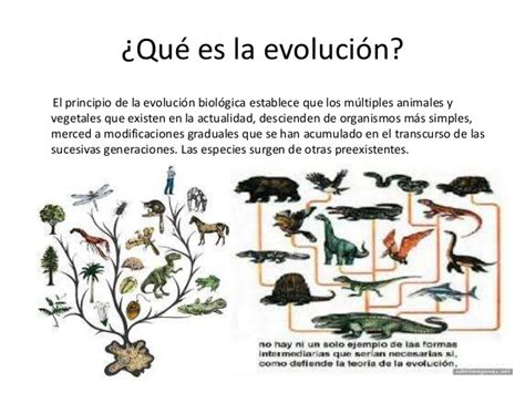 Introduccion a las teorias de la evolución