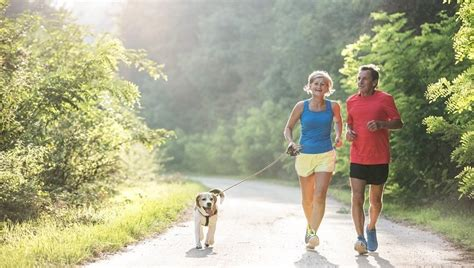 Is Jogging Or Running Safe For Dogs?   Dogtime