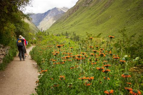 Is the Hiking Trail Near Me Good Enough? What You Need to ...
