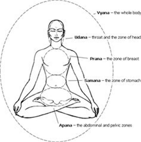 Isn t this a cool image of Yoga beyond the Asanas? Vayus ...
