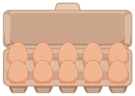 Isolated egg in carton   Download Free Vectors, Clipart ...