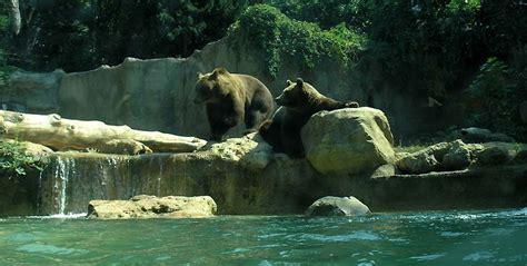 Italy Zoo