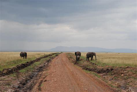 Itinerario y consejos para viajar a Kenia   Paperblog