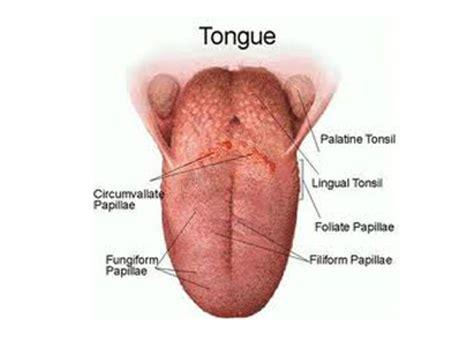 IYM Health: Tongue Cancer Symptoms