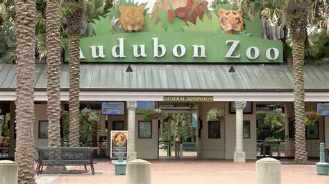 Jaguar escapes Audubon Zoo habitat in New Orleans; 8 ...