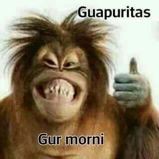 Jajajaja gur morni !!♡   Saludos graciosos, Buenos dias ...