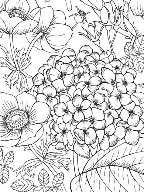 Jardim de Flores – Desenhos para Colorir