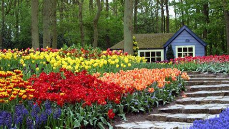 Jardín con flores de colores   1920x1080 :: Fondos de ...