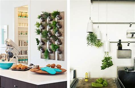 Jardín de hierbas aromáticas en la cocina | Decoora