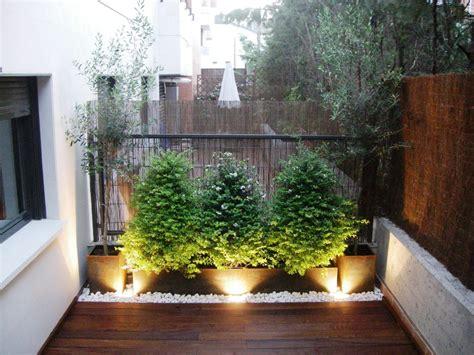 Jardín en una terraza o azotea   Guia de jardin