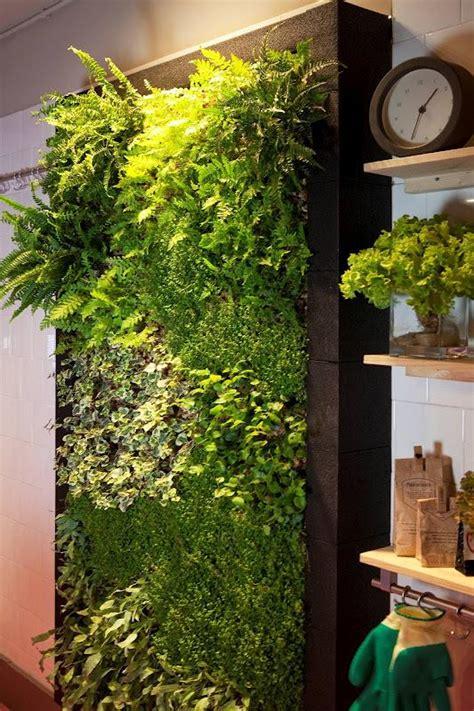 Jardín vertical interior para cocina   Alicante Forestal